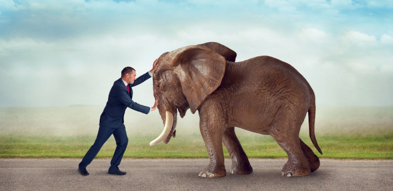 move-an-elephant-motivating-employees