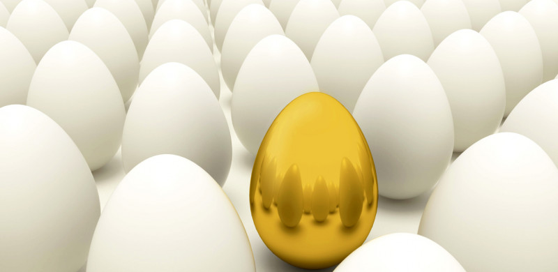 Gold egg in rows of normal eggs